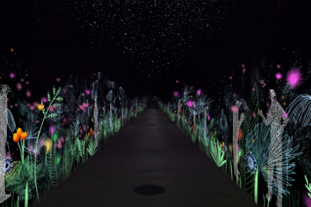Čarobna šuma / Tunel Grič