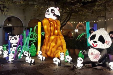 Panda Land / Ljetno kino Gradec